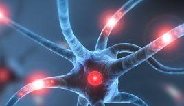 Header Neurologie_06.2020268x155